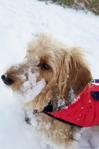 Mia's First Snow