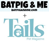 Sniff-Design-Studio-featured-on-Batpig-and-Me-and-Tails-Pet-Magazine