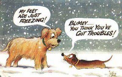 vintage dachshund cartoon