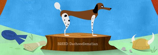 Sniff Design's own custom dog graphic - Dachoodlemation