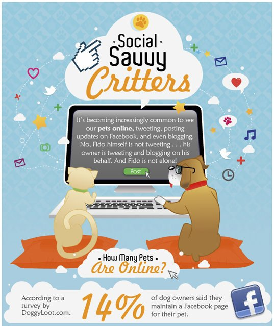 savvy critters pet infographic design