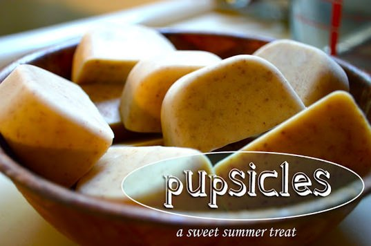 DIY summer pupsicle treat for your pet