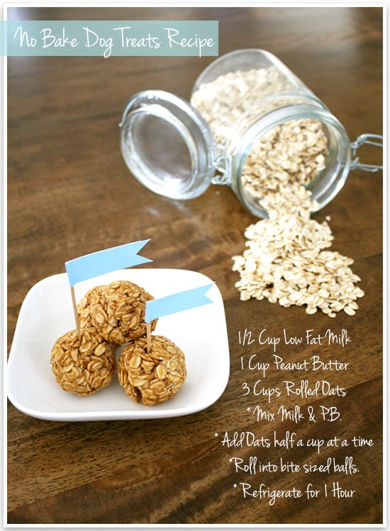 No Bake Dog Treats Recipe
