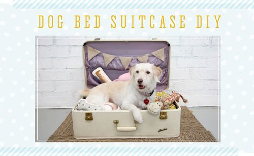 dog-bed-suitcase-DIY1