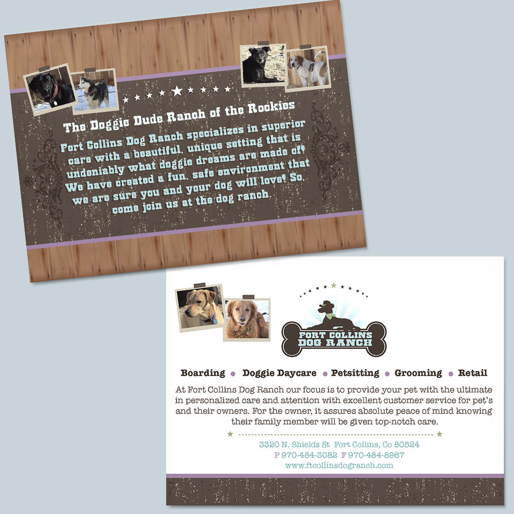 Fort-Collins-Dog-Ranch-Pet-Flyer-Design
