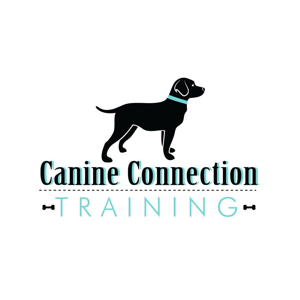 Canine Connection Dog Training