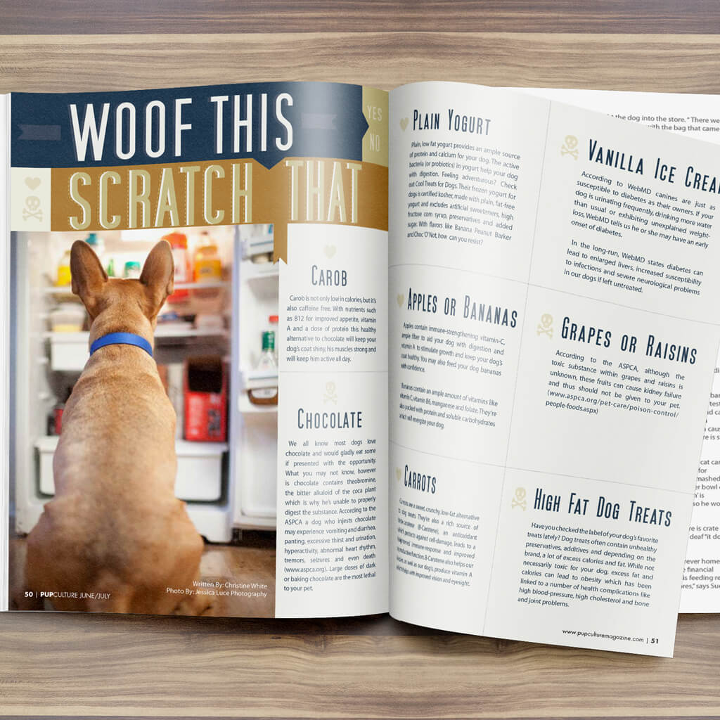 Pupculture-Mag-Pet-Article-Design-Woof-This