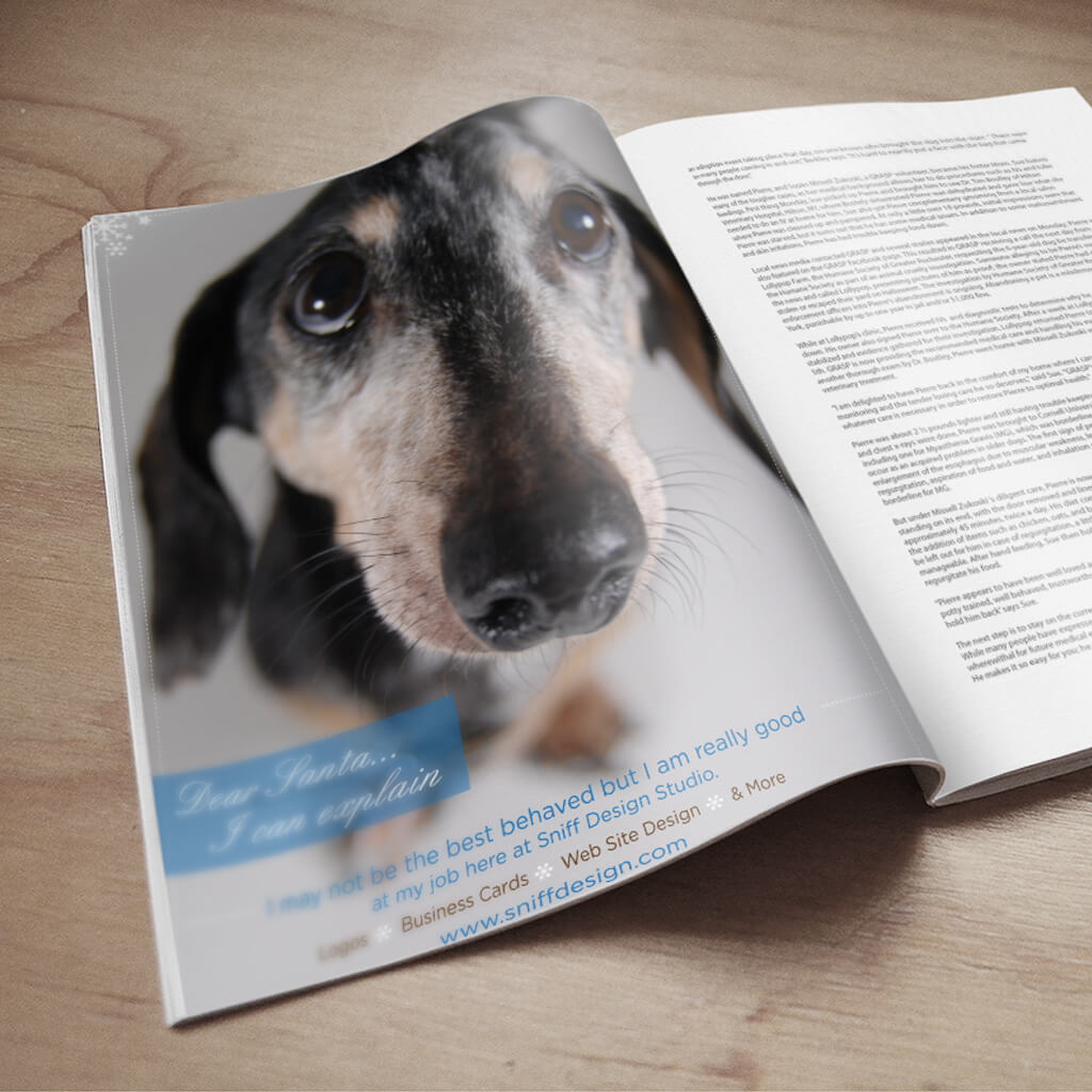 Pupculture-Mag-Pet-Article-Design-Sniff-Ad