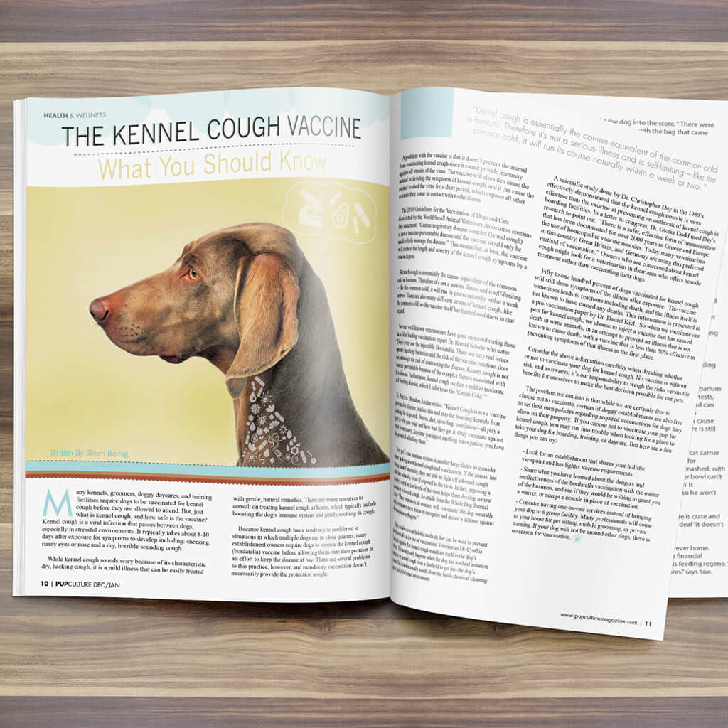 Pupculture-Mag-Pet-Article-Design-Kennel-Cough
