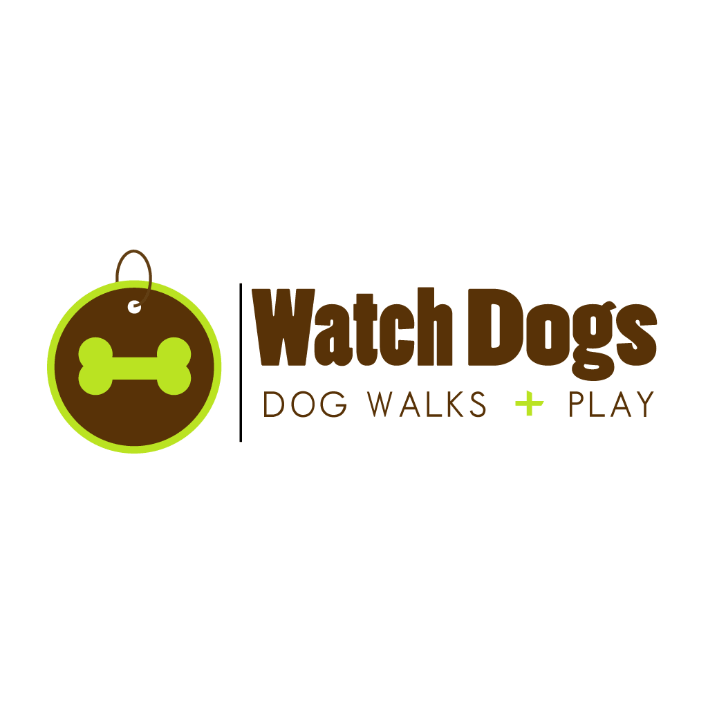 Watch Dogs Logo Design & Branding