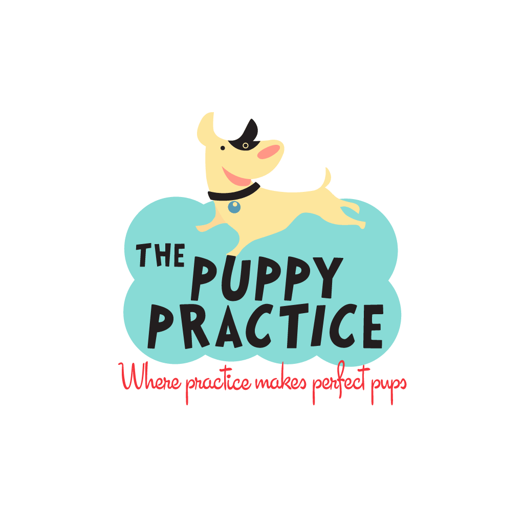 Pet Logo Design and Branding for The Puppy Practice