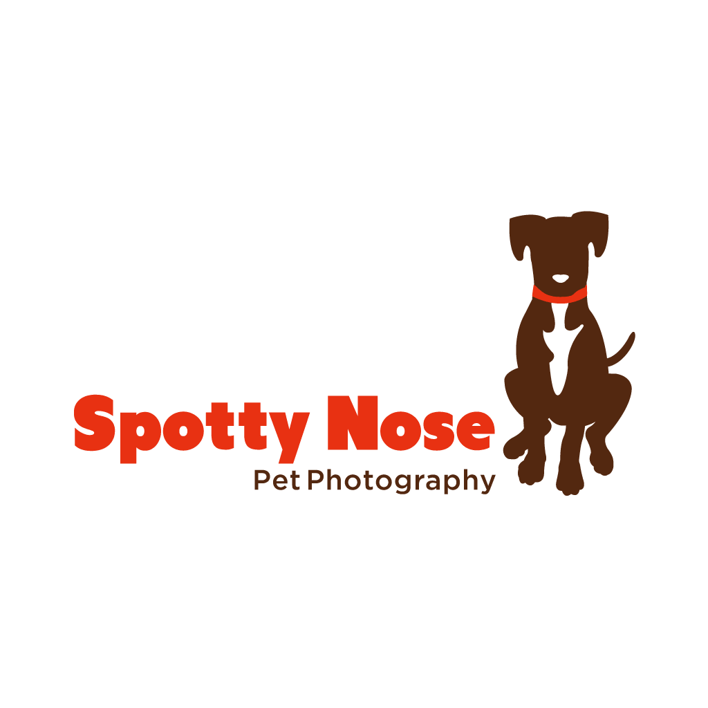 Spotty Nose Pet Photography