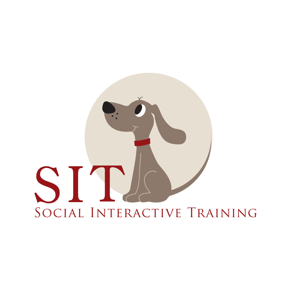 SIT Dog Training