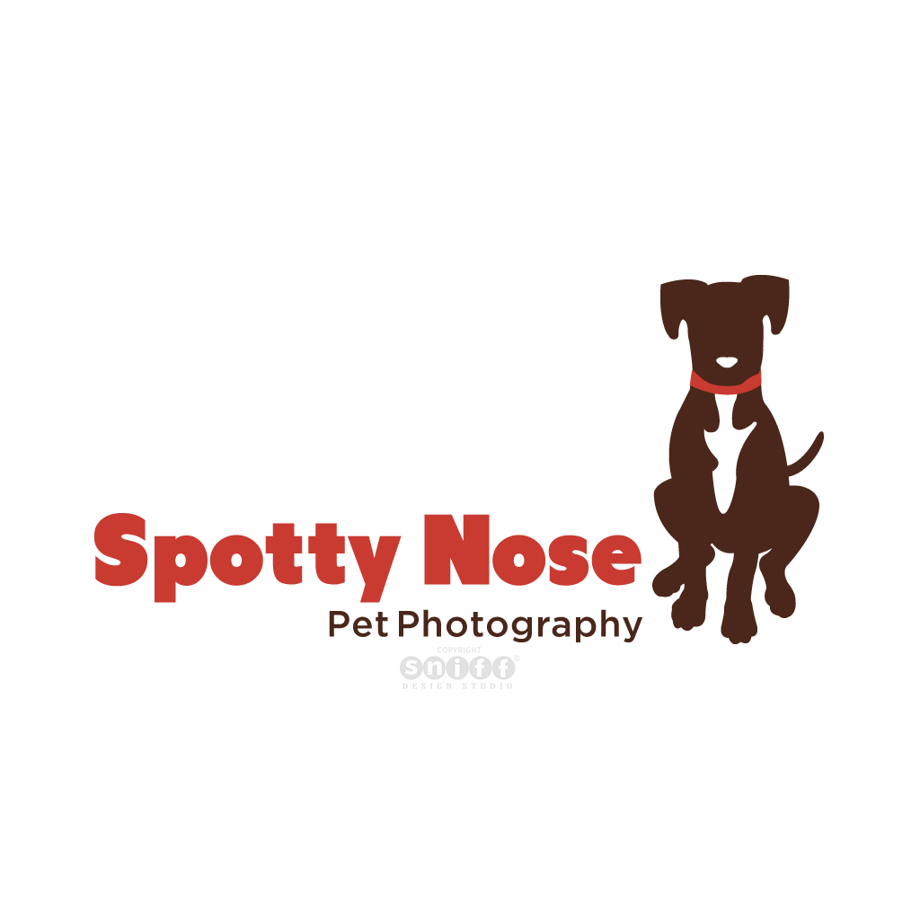 Spotty Nose Pet Photography - Pet Business Logo Design by Sniff Design Studio