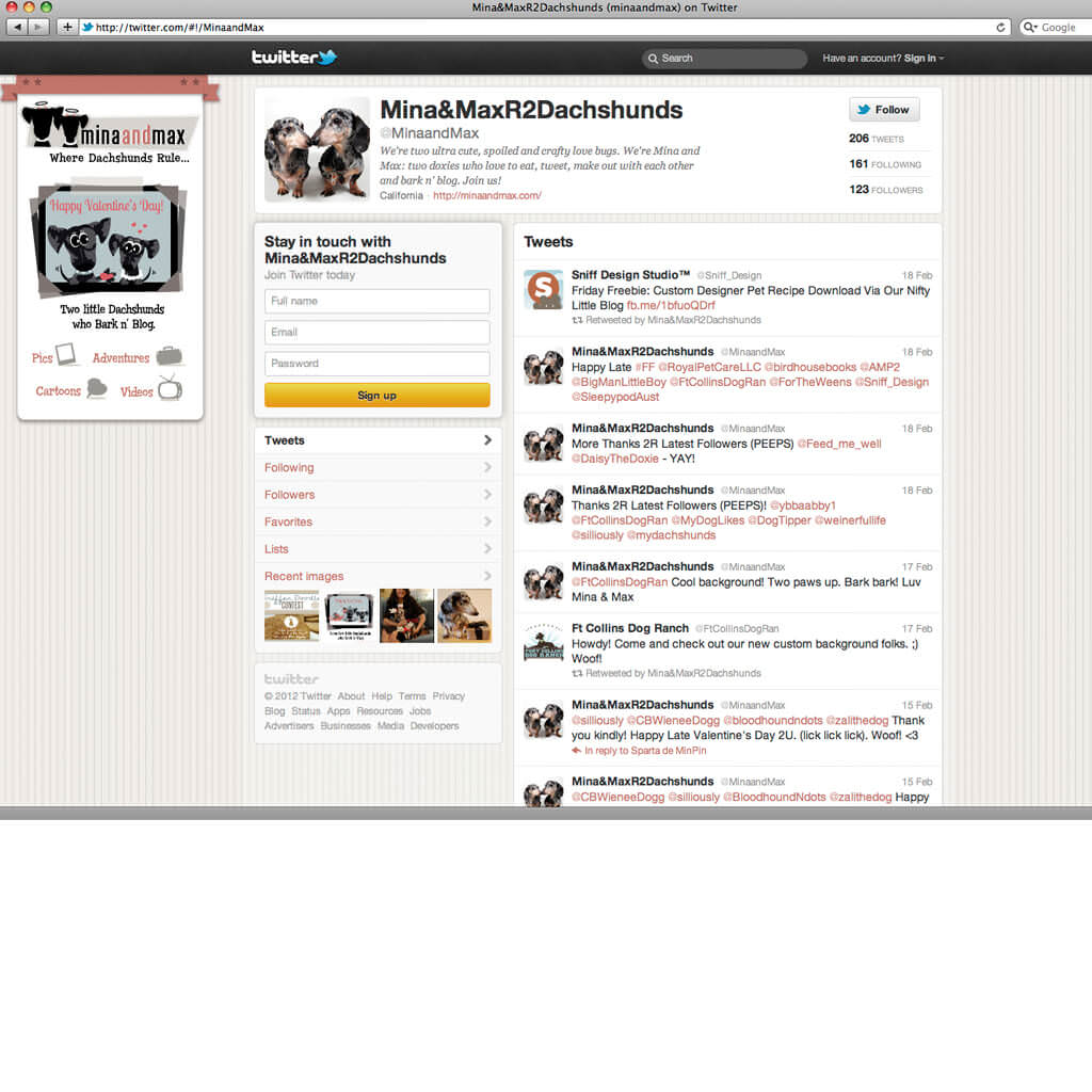 Custom Twitter Page Design for Mina & Max Dog Blog - Pet Business Social Media Design