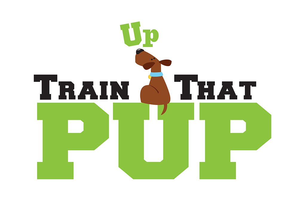 Train Up That Pup!