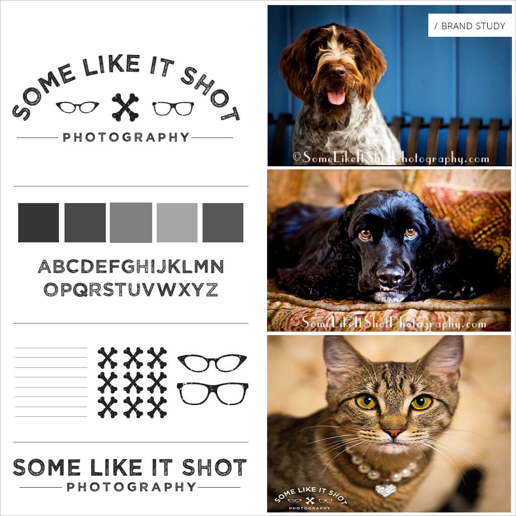 Some Like It SHOT Pet Business Brand Study #2 by Sniff Design Studio, award winning pet branding agency