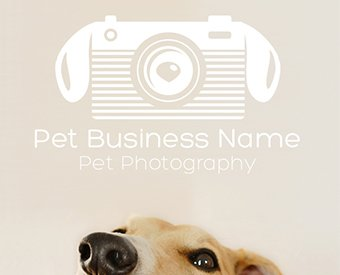ready-made-pet-photography-business-logo-design-for-sale-by-Sniff-Design-Basics-Modern25