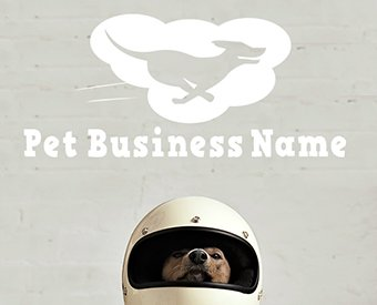 ready-made-pet-business-logo-design-for-sale-by-Sniff-Design-Basics-Modern12