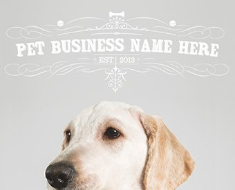 ready-made-pet-business-logo-design-for-sale-by-Sniff-Design-Basics-Elegant5