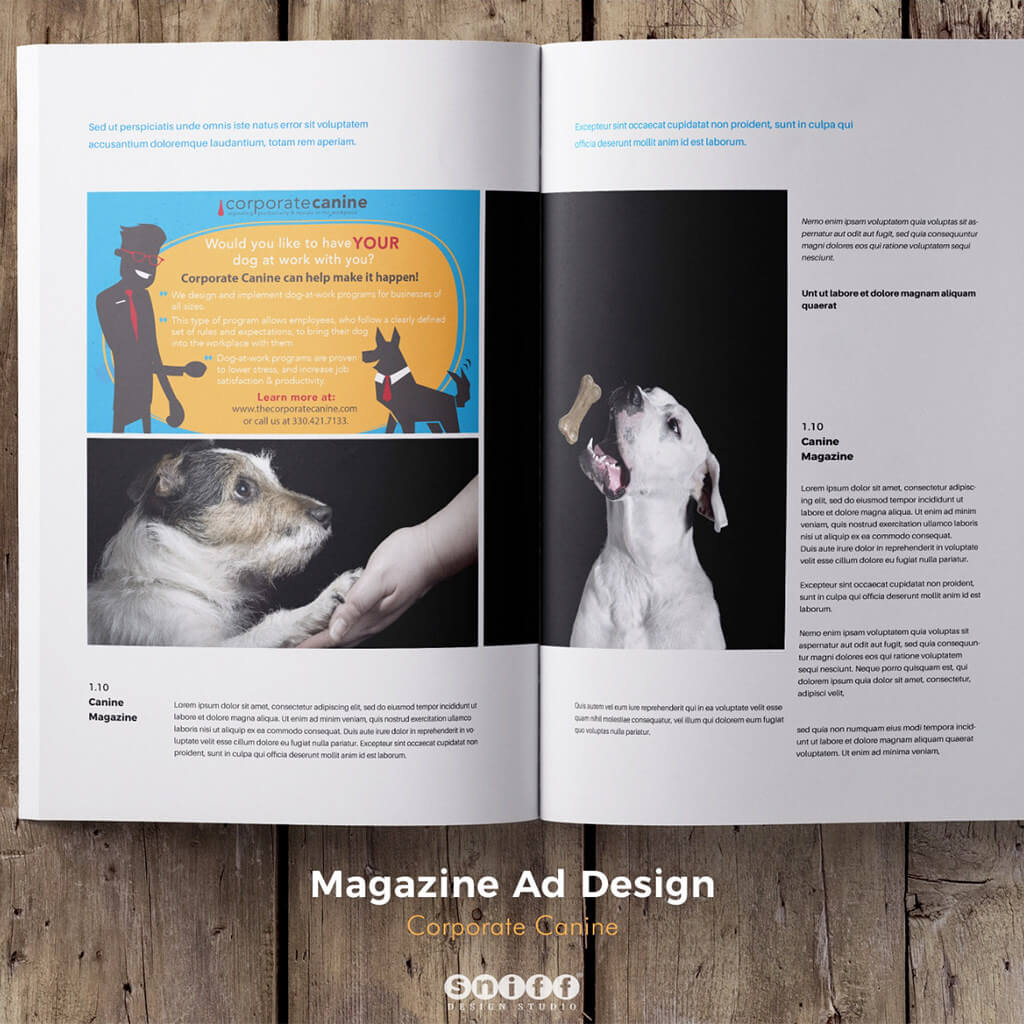 Magazine Ad Design for Corporate Canine by Sniff Design Studio