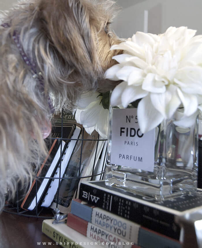 diy-no5-chanel-style-vase-label-by-sniff-design-studio-pic3