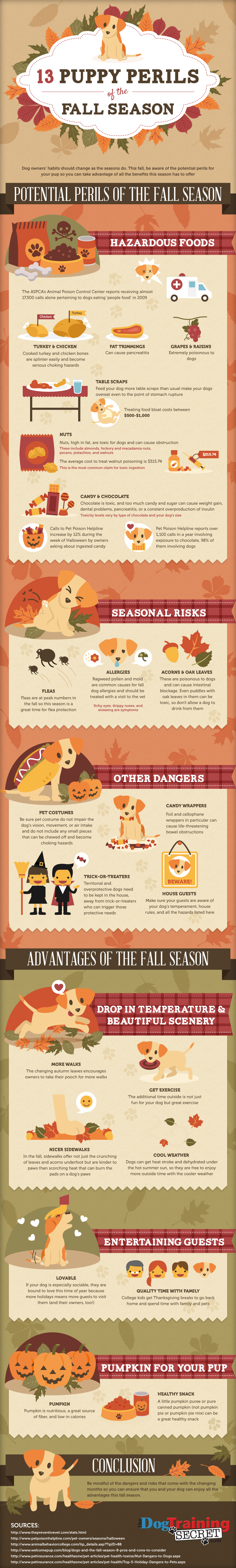 13 puppy perils and pearls of the fall season pet infographic for sniff design pet blog