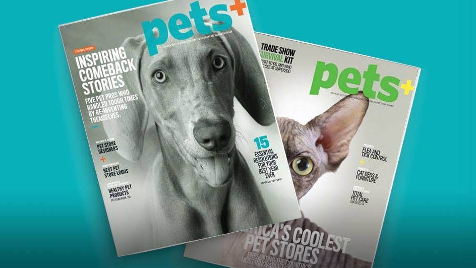 Pets+ Magazine Includes Sniff Design Studio Branding Article