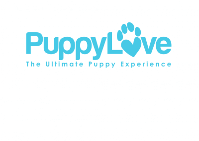 Puppy Love Parties – Pet Business Branding