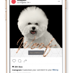 A free set of pet business social media graphics for petpreneurs by Sniff Design Studio