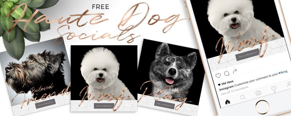 Haute Dog Social Media Free Graphics For Your Pet Business by Sniff Design Studio