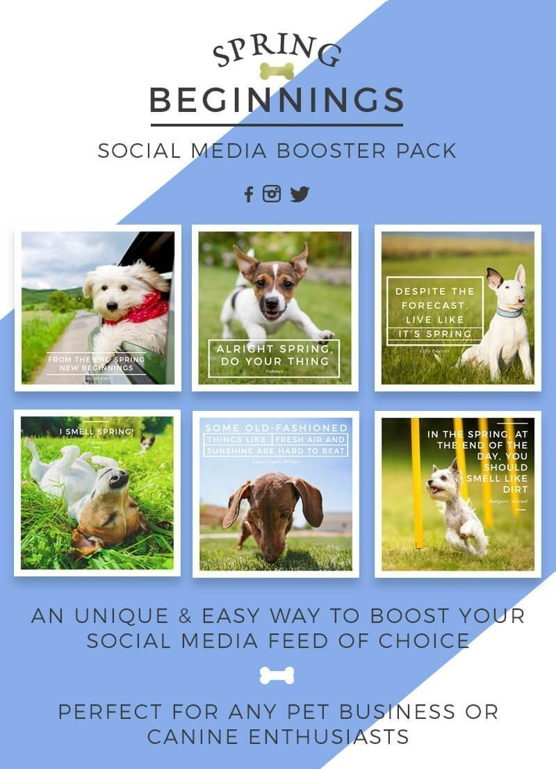 Spring Social Media Booster Pack For Pet Business Owners