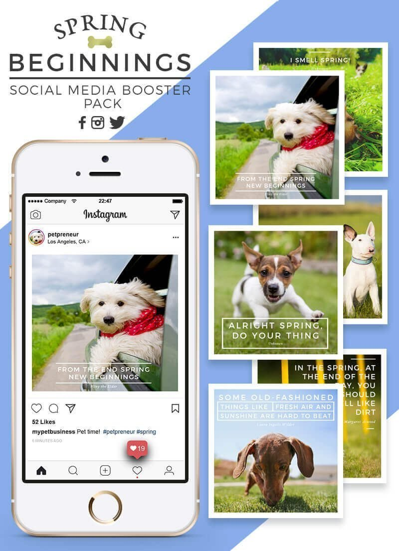 Spring Social Media Booster Pack For Pet Businesses - Feature Image - by Sniff Design Studio