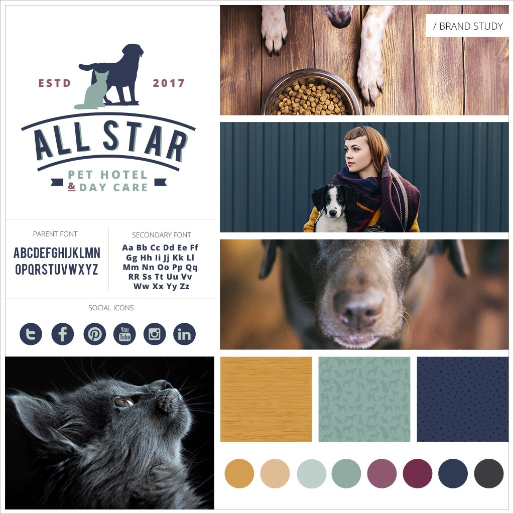Pet-business-branding-for-All-Star-Pet-Hotel-And-Day-Care-by-Sniff-Design-Studio