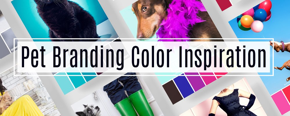 Pet Branding Color Inspiration