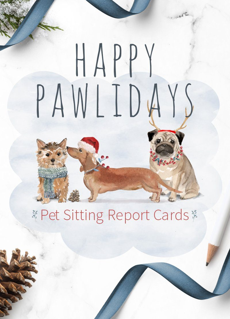 Christmas themed pet sitting report cards feature image by Sniff Design Studio