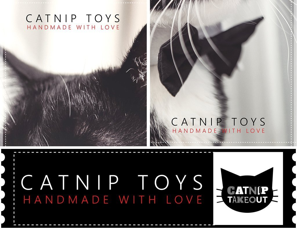 Catnip Takeout Cat Toy Secondary Logo Design by Sniff Design Studio