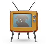 sniff design tv toggle icon for video tutorials
