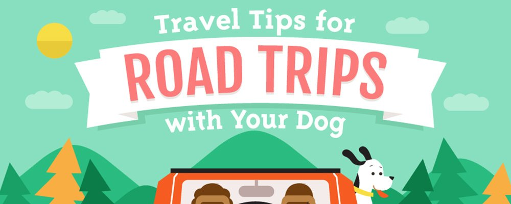 A Pet Infographic For Traveling with Dogs and Puppies: A Guide to Dog-Friendly Vacations