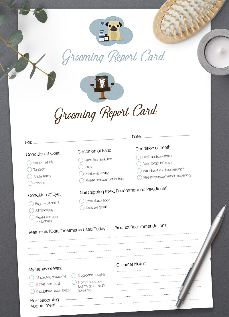 Pet Grooming Report Card Pack for Purchase by Sniff Design Studio