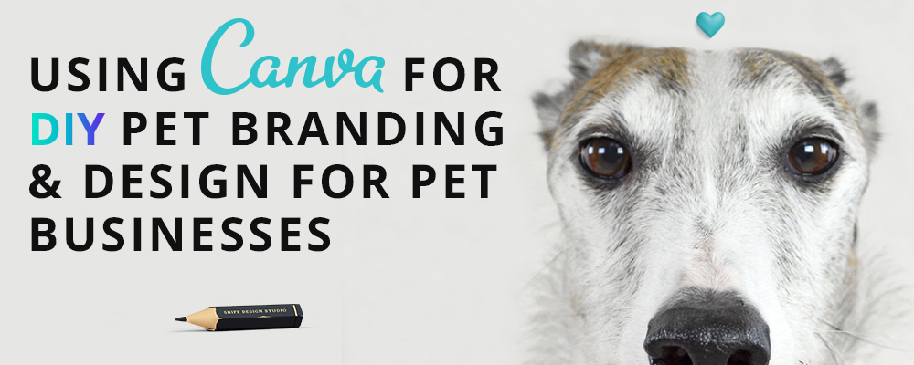 Using Canva for DIY pet branding and design for your business by Sniff Design Studio