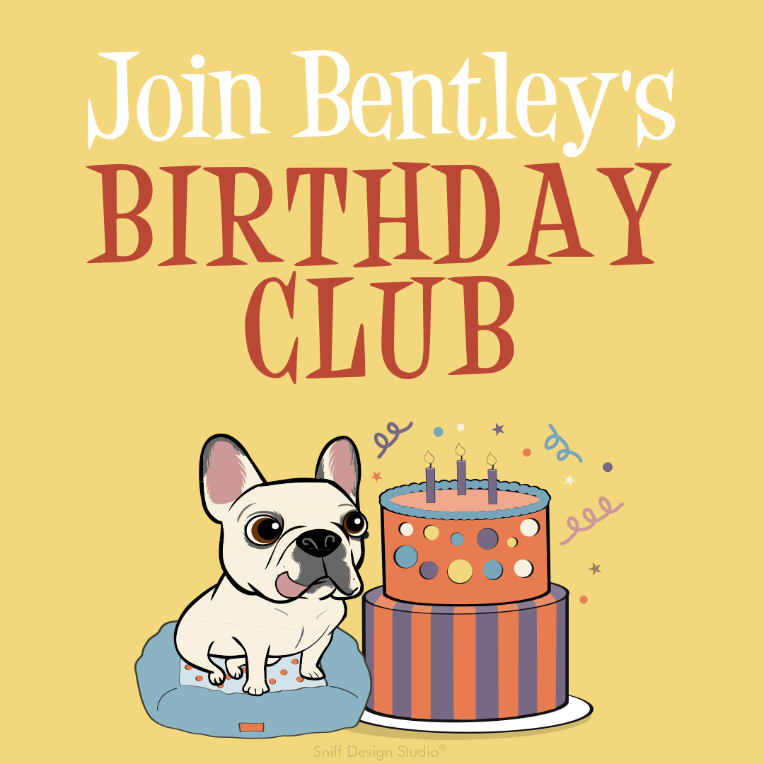 Custom Pet Fashion Illustrations for Bentley's Close Pet Boutique by Sniff Design Studio 7