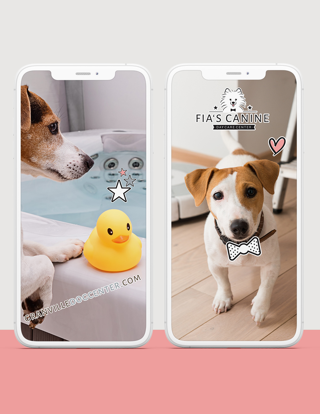 Fia's Canine Daycare Branding Digital Stickers by Sniff Design