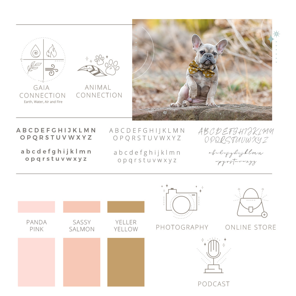 Inspired By Animals Pet Photography Branding Style