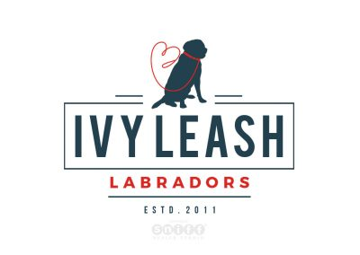 Pet Logo Design and Branding for Ivy Leash Labradors